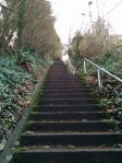 One of many of the stairways which link homes, trails and parks across the city